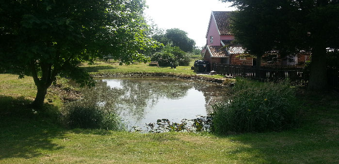 Natural ponds lakes suffolk essential ponds water for Natural pond maintenance