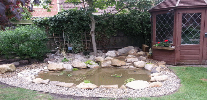 Garden pond design and construction cambridgeshire for Garden pond edging