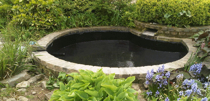 a pond coated with impermax pond liner